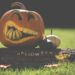 6 Sustainable Ways To Celebrate This Halloween