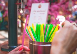 Plastic Straws: The Hollow Truth